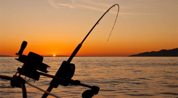 Fiske